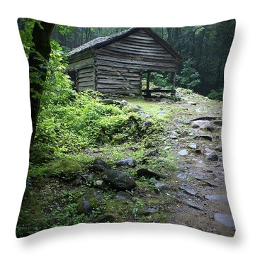 Old Mountain Cabin Throw Pillow