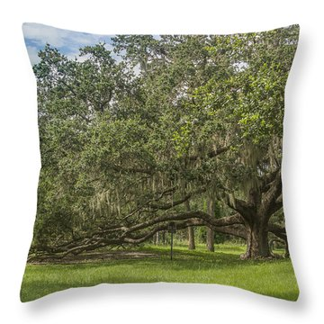 Throw Pillow featuring the photograph Old Oak Tree by Jane Luxton