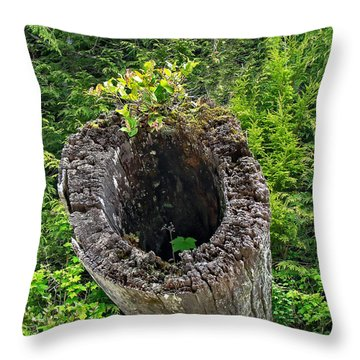 Old Piling Throw Pillow by Robert Bales