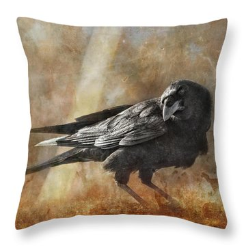 Old Rascal Throw Pillow by Susan Capuano
