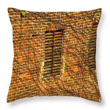 Old Roswell Manufacturing Mill Throw Pillow