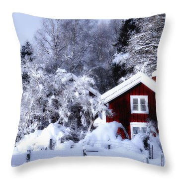 Old Rural Winter Landscape Scenery Throw Pillow