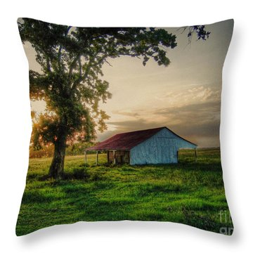 Old Shed Throw Pillow by Savannah Gibbs