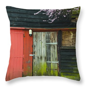 Old Shed Throw Pillow by Svetlana Sewell