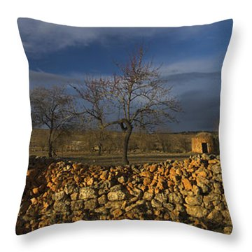 Old Shepherd's Hut Throw Pillow by Guido Montanes Castillo