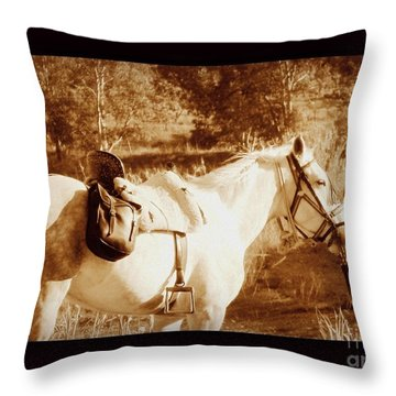 Throw Pillow featuring the photograph Old Spain by Clare Bevan