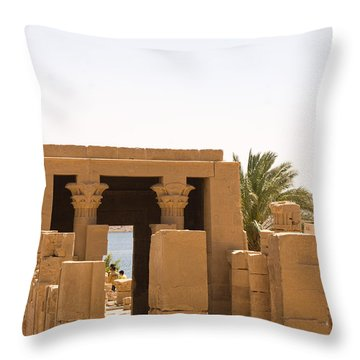 Old Structure 2 Throw Pillow