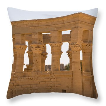Old Structure 3 Throw Pillow