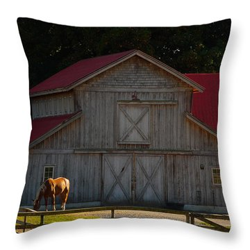 Throw Pillow featuring the photograph Old-style Horse Barn by Jordan Blackstone