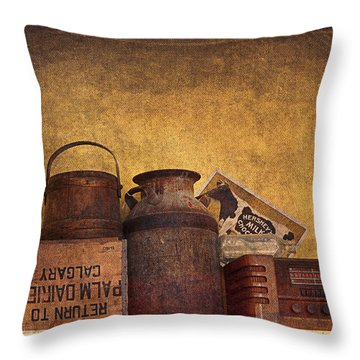 Old Things I Throw Pillow