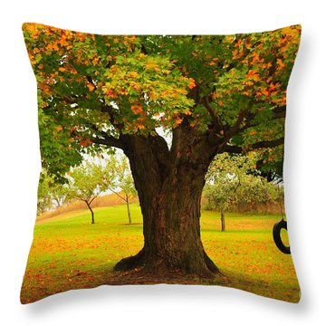 Old Tire Swing Throw Pillow by Terri Gostola