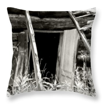 Old Tobacco Barn Throw Pillow by Michael Allen
