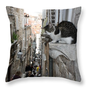 Old Town Alley Cat Throw Pillow by David Nicholls