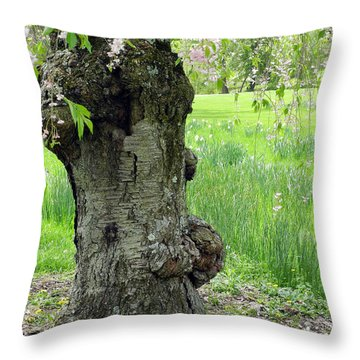 Old Tree In Spring Throw Pillow