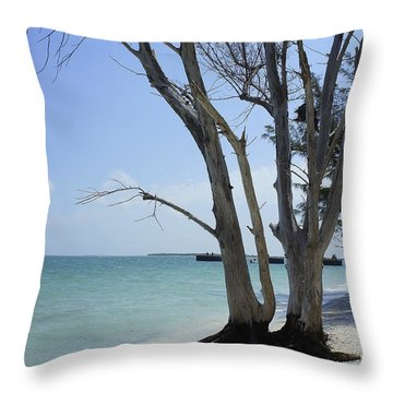 Throw Pillow featuring the photograph Old Tree by Laurie Perry
