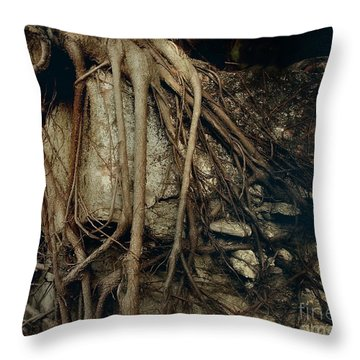 Old Tree On Broken Wall Throw Pillow by Yali Shi
