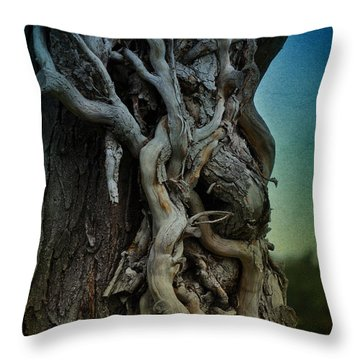 Old Vine Throw Pillow by Mary Machare
