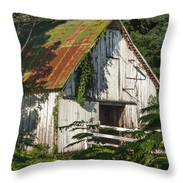 Old Whitewashed Barn In Tennessee Throw Pillow by Debbie Karnes