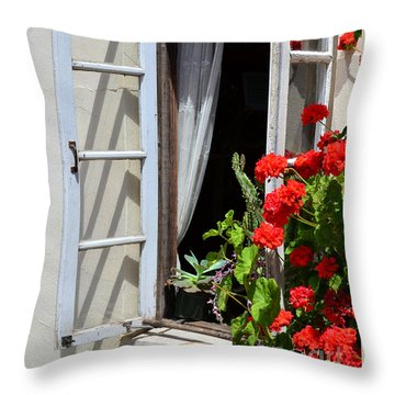 Throw Pillow featuring the photograph Old Window by Debby Pueschel