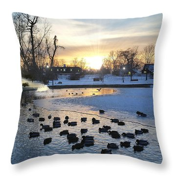 Throw Pillow featuring the photograph Old Winter Mill by Michael Rucker