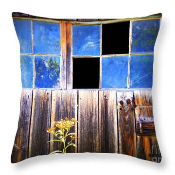 Old Wooden Building Of Broken Dreams Throw Pillow