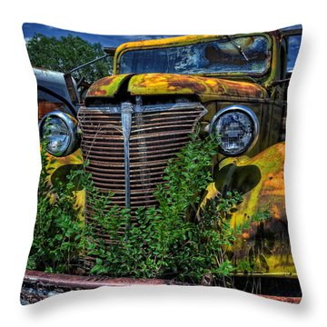 Throw Pillow featuring the photograph Old Yeller by Ken Smith
