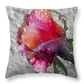 Throw Pillow featuring the photograph Olde English by Joe Schofield