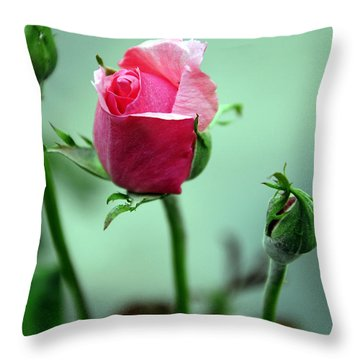Throw Pillow featuring the photograph Oldest Sibling by Clayton Bruster