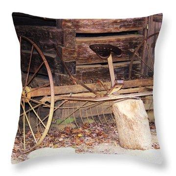 Throw Pillow featuring the photograph Ole Wheely by Faith Williams