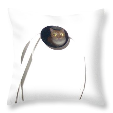 Throw Pillow featuring the photograph Olga Cat Reflected In Drawer Knob by Kathy Barney