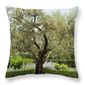 Olive Tree Throw Pillow by Pema Hou