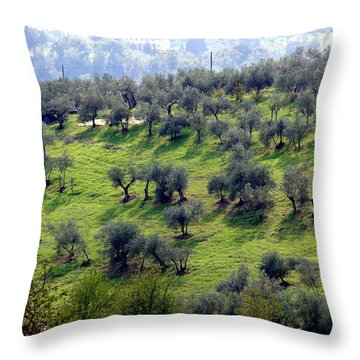 Olive Trees And Shadows Throw Pillow by Debi Demetrion