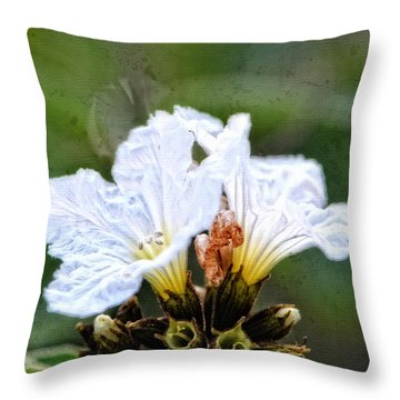 Olive You - Olive Flower Art By Sharon Cummings Throw Pillow by Sharon Cummings