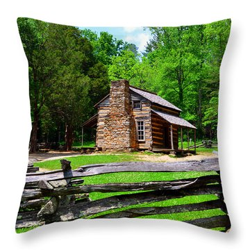 Oliver Cabin 1820s Throw Pillow by David Lee Thompson