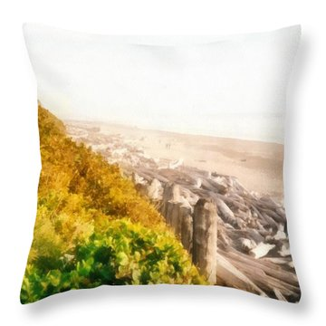 Olympic Peninsula Driftwood Throw Pillow by Michelle Calkins