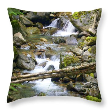 Olympic Range Stream Throw Pillow by Marty Koch