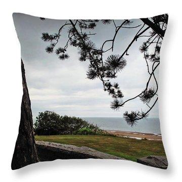 Omaha Beach Under Trees Throw Pillow by Joan  Minchak