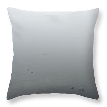 Throw Pillow featuring the photograph Ombre by Colleen Williams