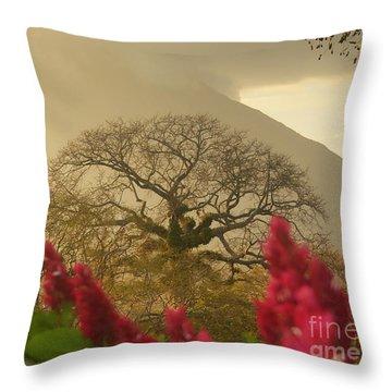 Ometepe Island 2 Throw Pillow