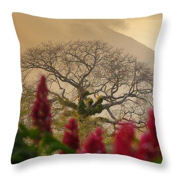 Ometepe Island Nicaragua 4 Throw Pillow