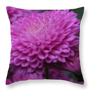Omg Pink Throw Pillow
