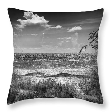 On A Clear Day-bw Throw Pillow