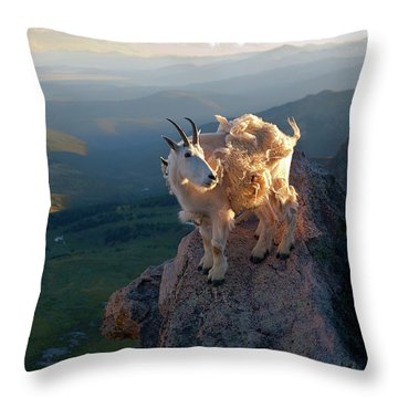 Throw Pillow featuring the photograph On A Clear Day by Jim Garrison