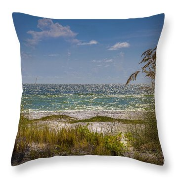 On A Clear Day Throw Pillow by Marvin Spates