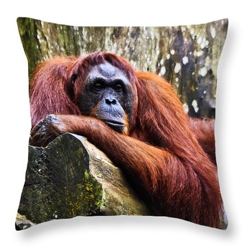 On A Limb Throw Pillow