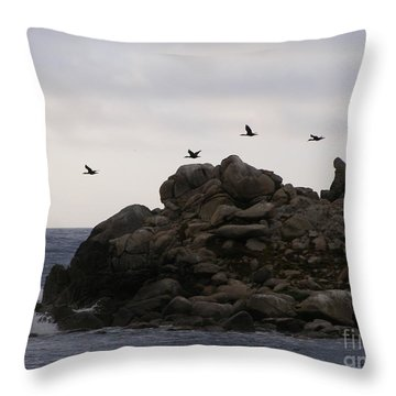 On A Mission Throw Pillow by Bev Conover