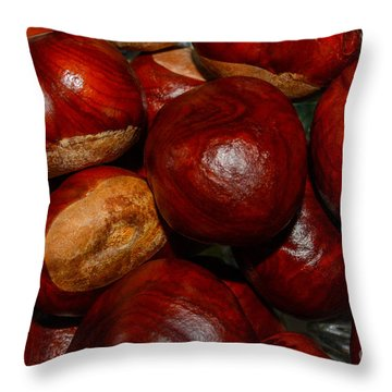 Throw Pillow featuring the photograph On A Open Fire by Tikvah's Hope