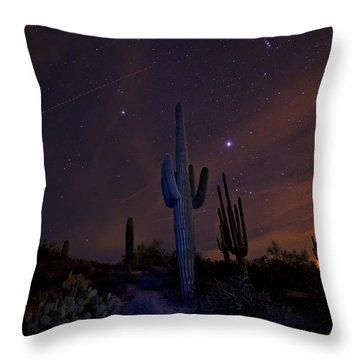 On A Starlit Night  Throw Pillow by Saija  Lehtonen