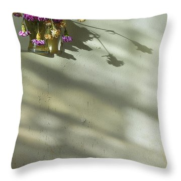 On A Wall Throw Pillow by Svetlana Sewell