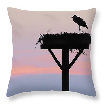 Throw Pillow featuring the photograph On A Wing And A Prayer Image Art by Jo Ann Tomaselli